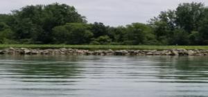 Summary of GLSM Wetlands Monitoring 2019