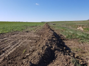 SWCD Installs First Saturated Buffer