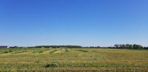 Soil Test Phosphorus Reduced in SWCD Program